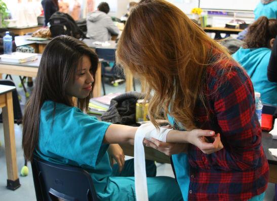 Seniors Selena Sanchez and Danielle Valerio practice bandaging techniques.  Photo Credit: Bree Eure