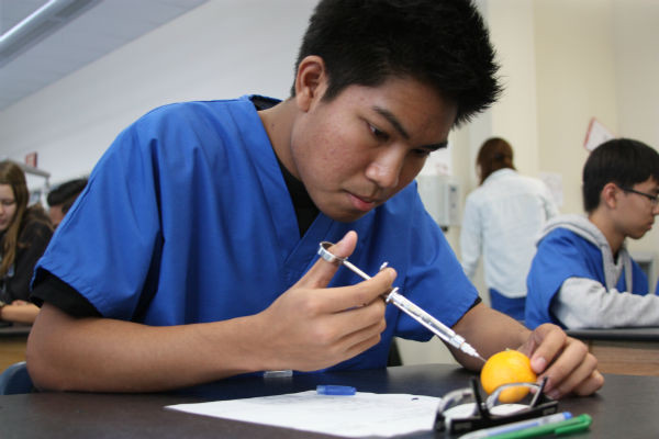 Junior Keenan Srisaeng carefully injects the anesthetics with the provided syringe into an orange.  Photo Credit: Michelle Mauel