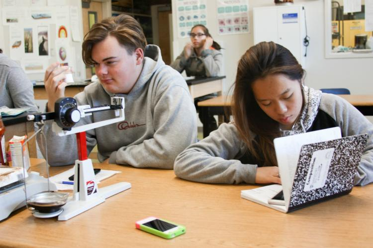 """Sophomore Jordan Salas checks on his ingredients for his experiment while Vivien Huang rates the demos and presentations. """"There's a beauty to all the experiments and I'm so excited to be able to do mine today,"""" Salas said."""