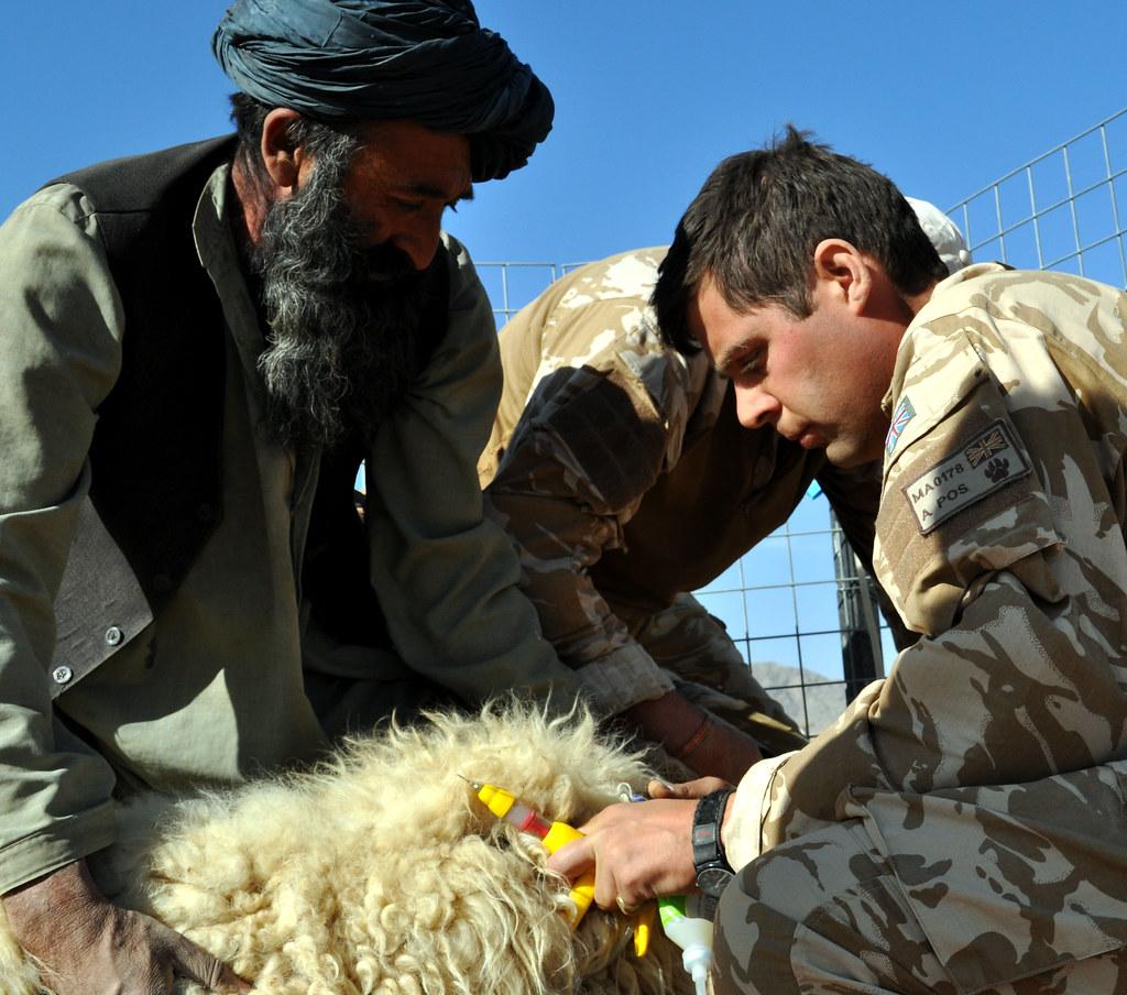 Four Corners Program on Australian Alleged War Crimes in